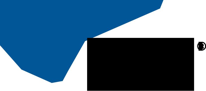 Bird-Blue-Black-Logo